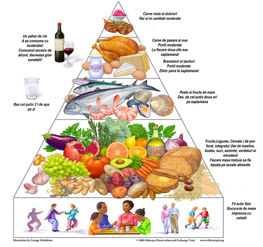 piramida alimentelor