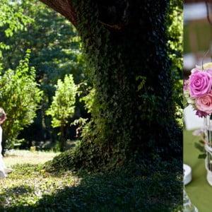 Nunta in padure
