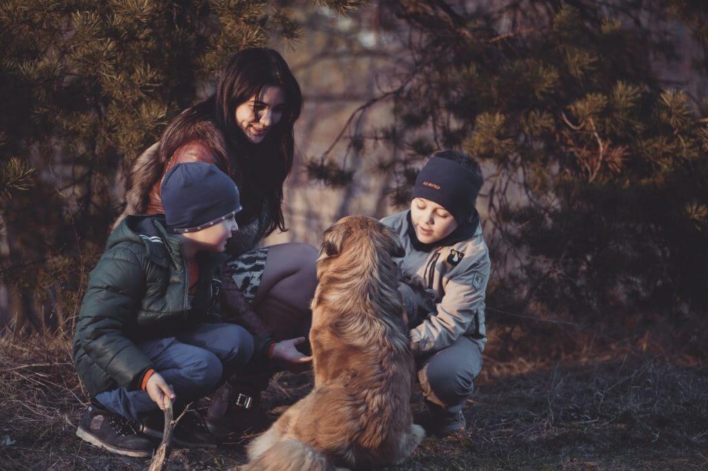 Cum alegi un animal de companie pentru familie