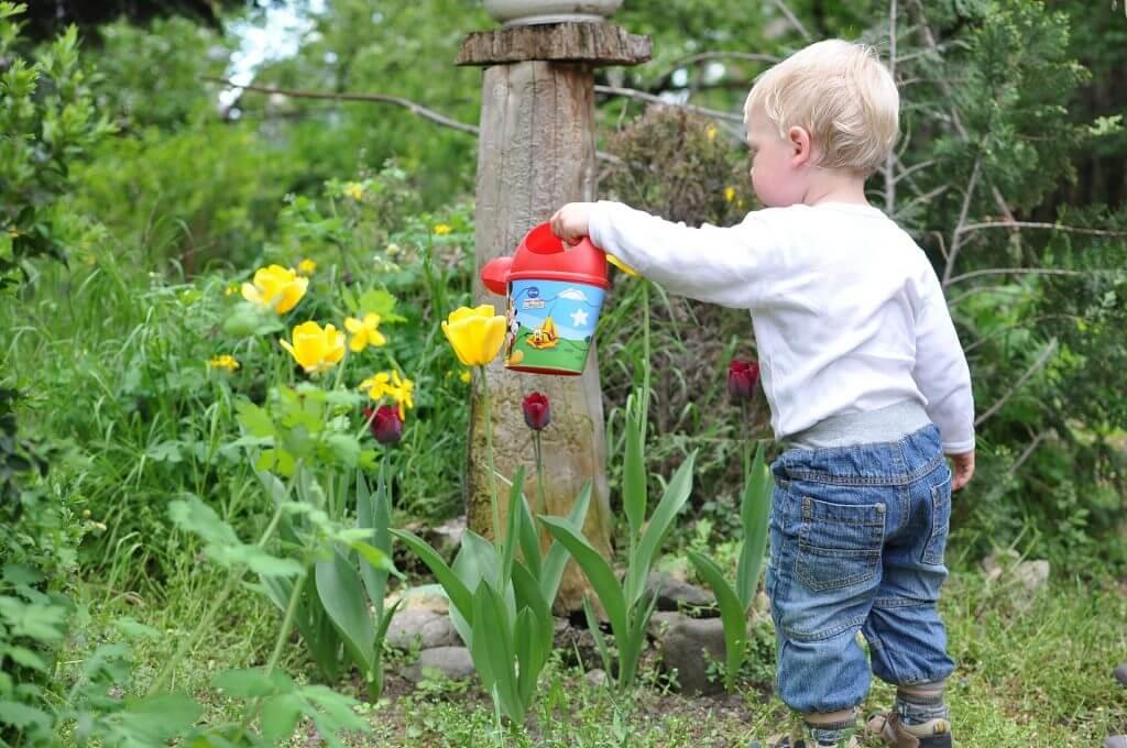 Creeaza o gradina potrivita pentru copii